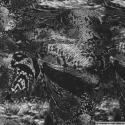 Viscose imprimée serpent noir et blanc