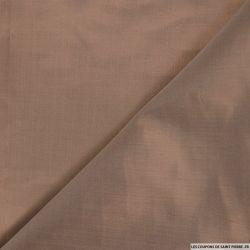 Doupion de soie sépia