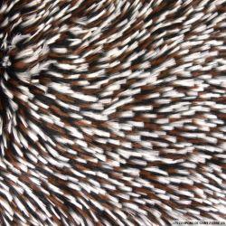 Fausse fourrure à poils très longs tricolore