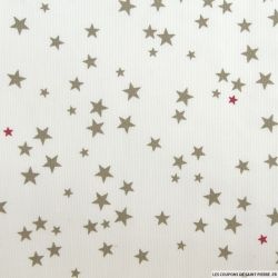 Tissus Piqué de coton imprimé étoiles taupe et framboise