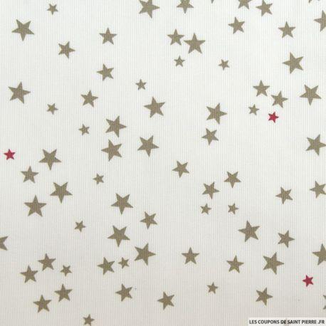 Tissu Piqué de coton imprimé étoiles taupe et framboise