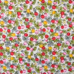 Coton imprimé pommes rouge