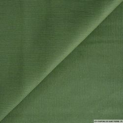 Velours côtelé vert sapin
