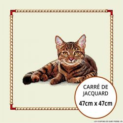 Jacquard chat assis - 47cm x 47cm