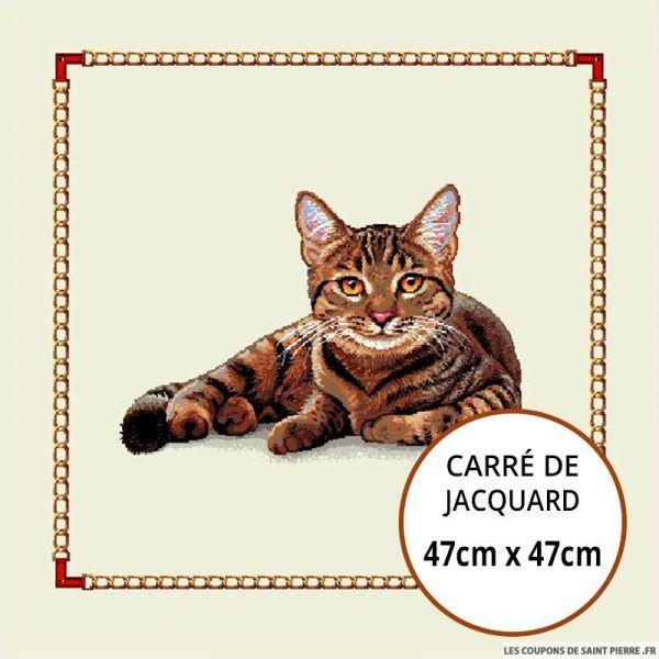 Jacquard chat assis - 47cm x 47cm