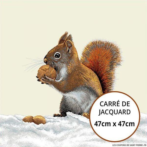 Jacquard ecureuil - 47cm x 47cm