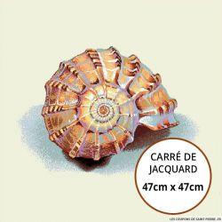 Jacquard coquillage - 47cm x 47cm