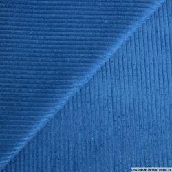 Velours côtelé coton bleu