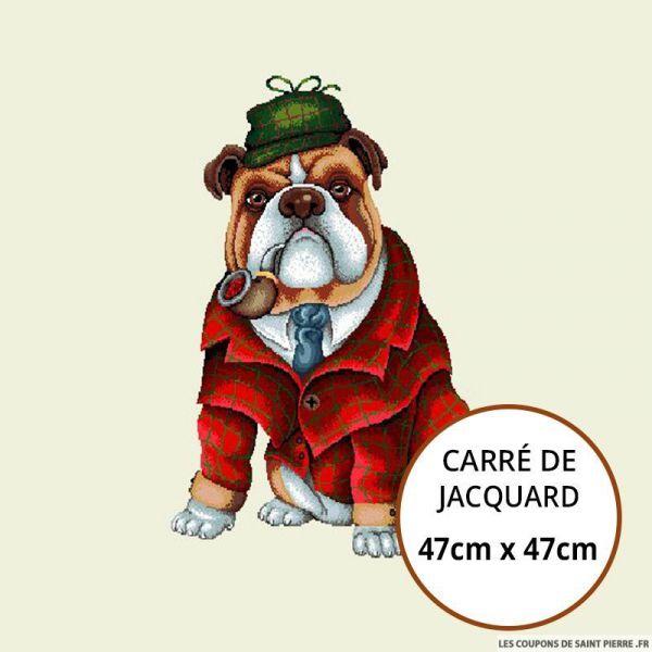Jacquard bulldog anglais - 47cm x 47cm