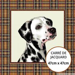 Jacquard dalmatien - 47cm x 47cm